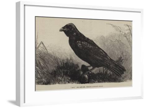 Grip, the Late Mr Charles Dickens's Raven--Framed Art Print