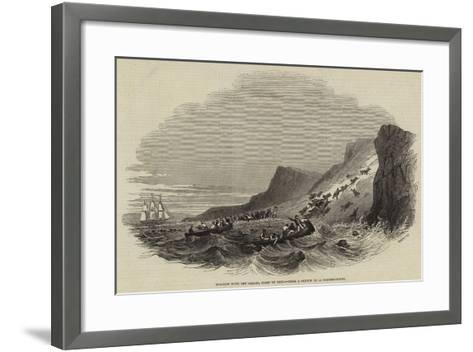 Sea-Lion Hunt Off Callao, Coast of Peru--Framed Art Print