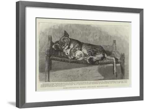 Domestication Makes Strange Bedfellows--Framed Art Print