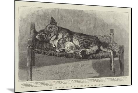 Domestication Makes Strange Bedfellows--Mounted Giclee Print