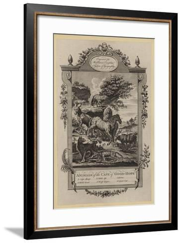 Animals of the Cape of Good-Hope--Framed Art Print