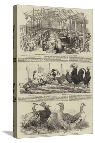 Birmingham Agricultural Association--Stretched Canvas Print