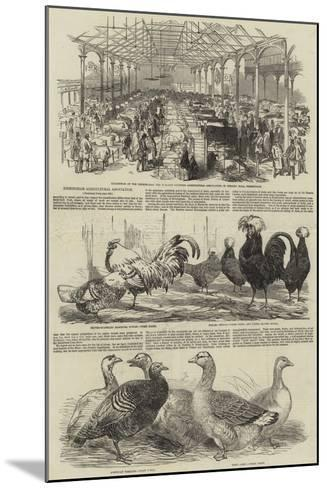 Birmingham Agricultural Association--Mounted Giclee Print
