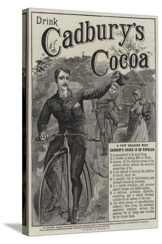 Advertisement, Cadbury's Cocoa--Stretched Canvas Print