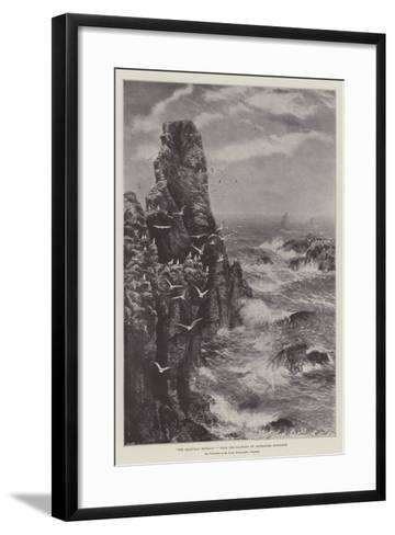 The Seagulls' Retreat--Framed Art Print