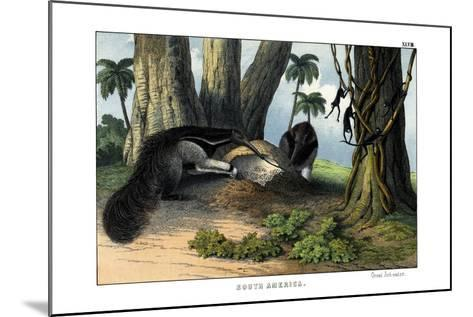 Great Anteater, 1860--Mounted Giclee Print