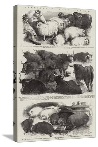 Smithfield Club Prizes--Stretched Canvas Print