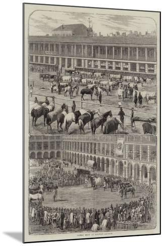 Cattle Show at Halifax--Mounted Giclee Print