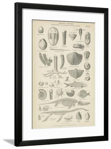 Organic Remains--Framed Art Print