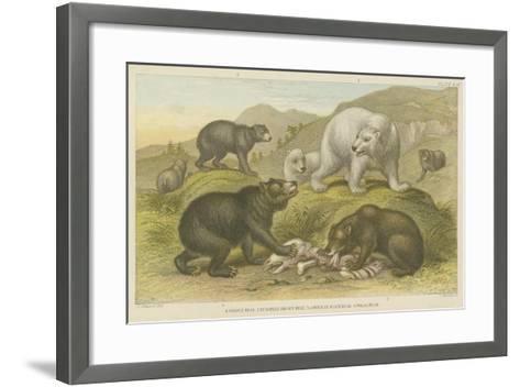Bears--Framed Art Print