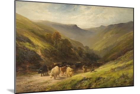 Highland Cattle--Mounted Giclee Print