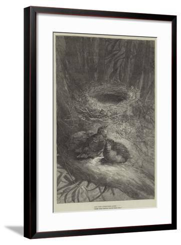 Bent Upon Adventurous Quest, These Bold Birdies Leave their Nest--Framed Art Print