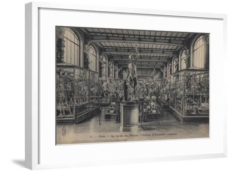 Paris, Jardin Des Plantes--Framed Art Print