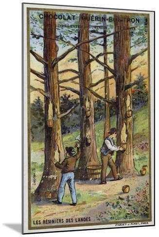 Pine Resin Collectors in the Landes, France--Mounted Giclee Print