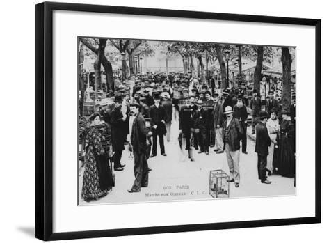 Bird Market, Paris--Framed Art Print