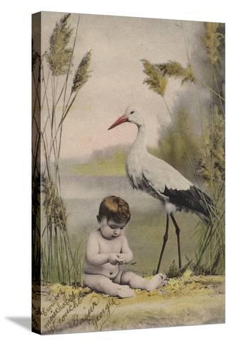 Baby with Stork--Stretched Canvas Print