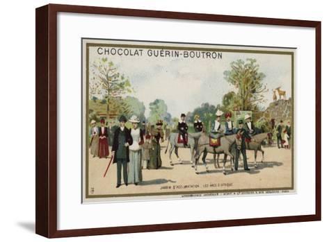 African Donkeys, Jardin D'Acclimation, Paris--Framed Art Print