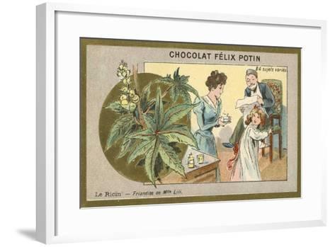 Castor Oil - Delicacy of Miss Lili--Framed Art Print