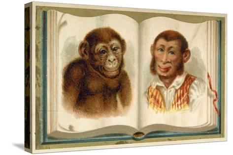 Portraits of an Ape and a Man--Stretched Canvas Print