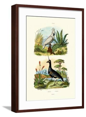 Umbrella Cockatoo, 1833-39--Framed Art Print