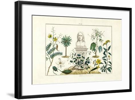 Carl Von Linnée, 1833-39--Framed Art Print