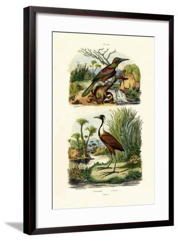 Great Jacamar, 1833-39--Framed Art Print
