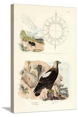 Imperial Eagle, 1833-39--Stretched Canvas Print