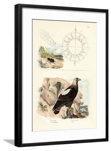 Imperial Eagle, 1833-39--Framed Art Print