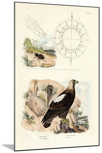 Imperial Eagle, 1833-39--Mounted Giclee Print
