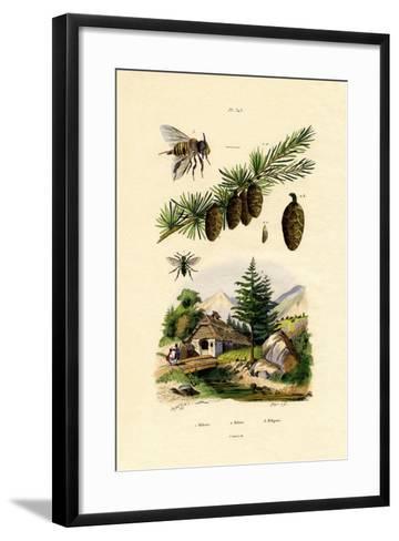 Mourning Bee, 1833-39--Framed Art Print