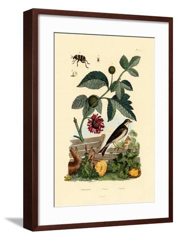 Paper Mulberry, 1833-39--Framed Art Print