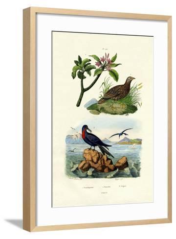 Red Frangipani, 1833-39--Framed Art Print
