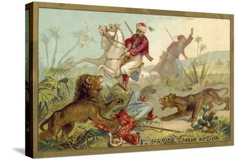 Hunting Lion in Africa--Stretched Canvas Print