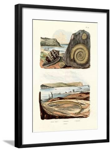 Admiral Cone, 1833-39--Framed Art Print