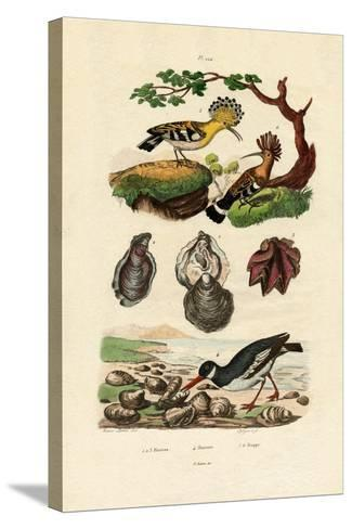 Oysters, 1833-39--Stretched Canvas Print