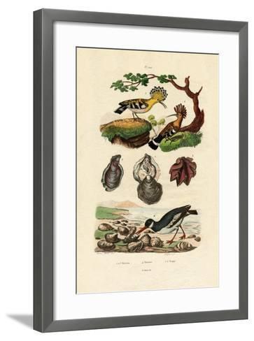 Oysters, 1833-39--Framed Art Print