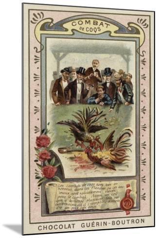 Cockfighting--Mounted Giclee Print