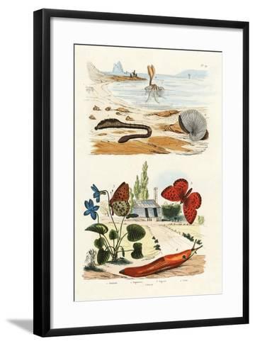 Lungworm, 1833-39--Framed Art Print