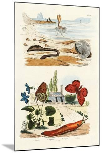 Lungworm, 1833-39--Mounted Giclee Print