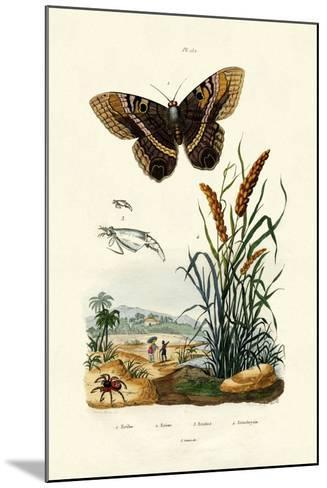 Ringlet, 1833-39--Mounted Giclee Print