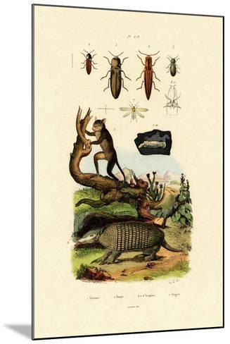 Tarsier, 1833-39--Mounted Giclee Print