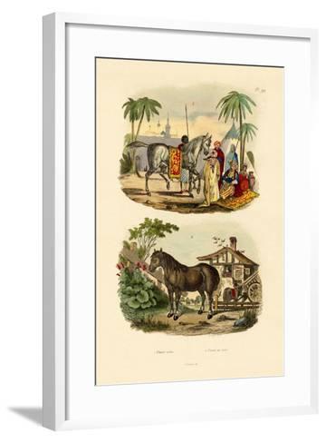 Arab Horse, 1833-39--Framed Art Print