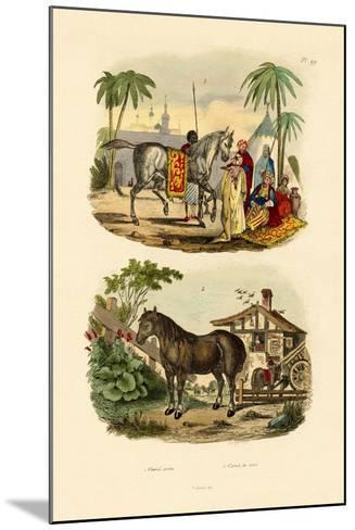 Arab Horse, 1833-39--Mounted Giclee Print