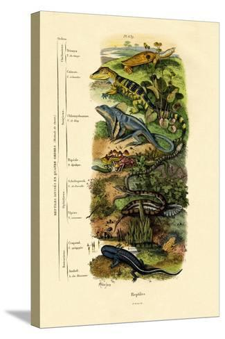 Reptiles, 1833-39--Stretched Canvas Print