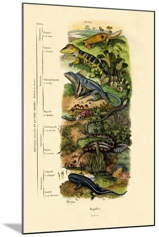 Reptiles, 1833-39--Mounted Giclee Print