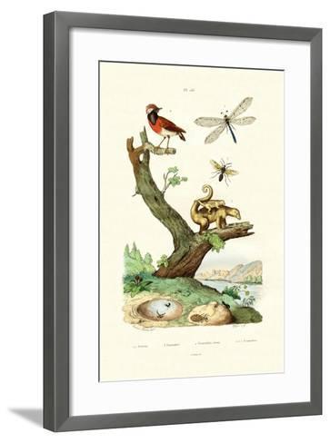 Ants, 1833-39--Framed Art Print