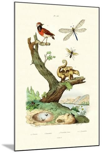 Ants, 1833-39--Mounted Giclee Print