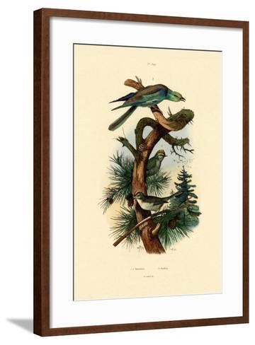 Goldcrests, 1833-39--Framed Art Print