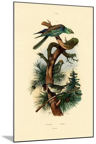 Goldcrests, 1833-39--Mounted Giclee Print