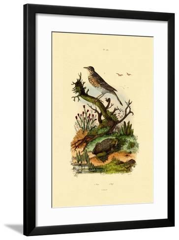 Pipa, 1833-39--Framed Art Print